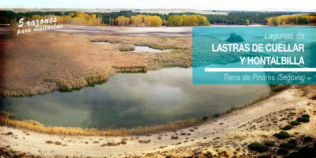 Lagunas de Lastras de Cuéllar y Hontalbilla