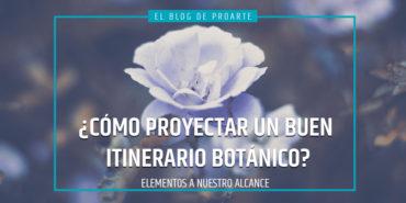proyectaritinerariosbotanicos